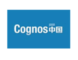 DB2搭建Cognos用户